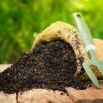 Cara Membuat Pupuk Organik Mudah dan Ramah Lingkungan